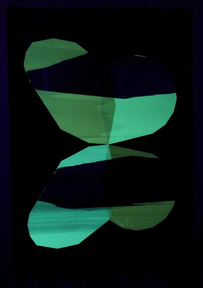 papillon-nuit-8