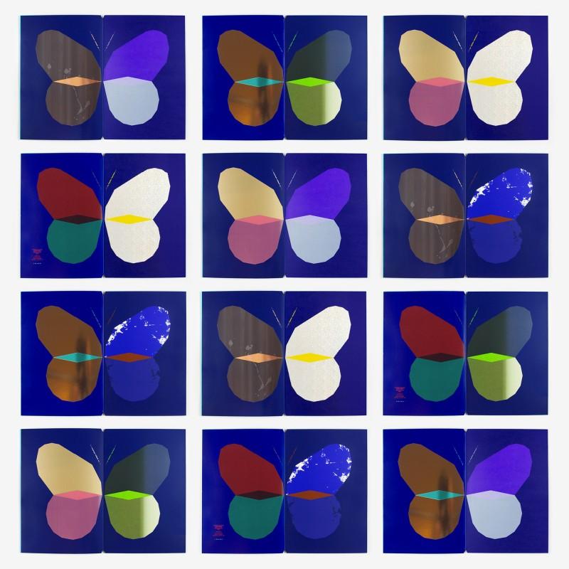 papillon_45