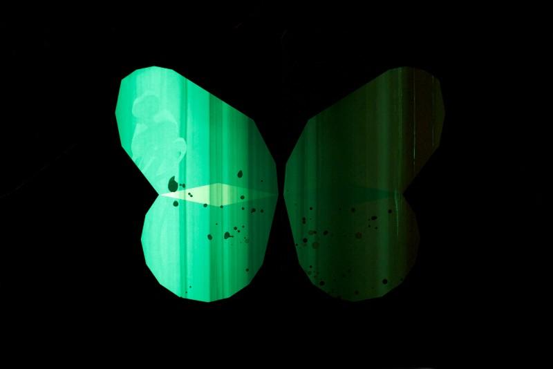 papillon_nuit_05